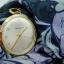 นาฬิกาเก่า CARAVELLE ไขลาน thumbnail 17