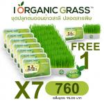 i Organic Grass 7 FREE 1 ชุด (เฉลี่ย 95/ชุด)
