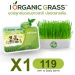 i Organic Grass 1 ชุด