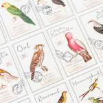 โปสการ์ดชุด Birds Atlas - 30ใบ/เซ็ท