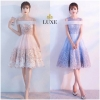 Embellished Organdy Dress