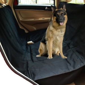 ชุดปูนั่งในรถสำหรับสัคว์เลี้ยง