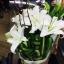 ช่อดอกไม้ 04 thumbnail 1