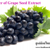 Power of Grape Seed Extract