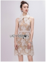 Grace Refined Chiffon Ribbon Lace Mini Dress