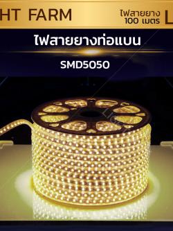 ไฟสายยาง SMD 5050 (100 m.) สีวอมไวท์ (ท่อแบน)