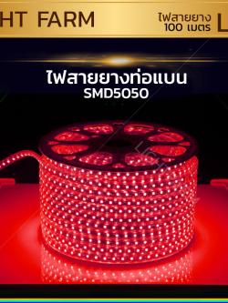 ไฟสายยาง SMD 5050 (100 m.) สีแดง (ท่อแบน)