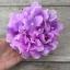ปากกาดอกไฮเดรนเยีย สีม่วง thumbnail 3