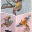 สเวทเตอร์ไหมพรมทอลายนก ปักหน้าหลัง thumbnail 6
