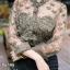 เสื้อผ้าเกาหลีพร้อมส่ง เสื้อเชิ๊ตคอปีน ตัดต่อผ้าซีทรูแต่งด้วยงานปักดอก thumbnail 5