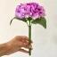ปากกาดอกไฮเดรนเยีย สีม่วง thumbnail 1
