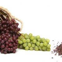 Grape seed เมล็ดองุ่น