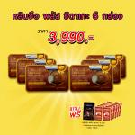*Promotion* Lingzhi Plus Shiitake หลินจือ พลัส ชิตาเกะ บรรจุ 60 แคปซูล 6กล่องๆละ 665 บาท ส่งฟรี EMS (แถมฟรี อีก 60 แคปซูล/กาแฟคอลาเจน 1 กล่อง)