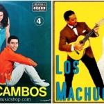 Los Machucambos