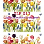 TLP011 กระดาษแนพกิ้น 21x30ซม. ลายทิวลิป