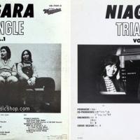Niagara Triangle