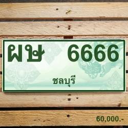 ผษ 6666 ชลบุรี