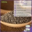 เมล็ดเชีย Chia Seed Nathary by Nathary thumbnail 2