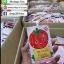 เซรั่มน้ำมะเขือเทศฮายัง Ha-young Tomato Serum thumbnail 11