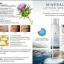 น้ำแร่ยกกระชับผิวหน้า Hive Mineral Lifting Spray โปรโมชั่น ส่งฟรี EMS thumbnail 8