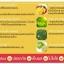 แมงโก้แมงโก้ พลัส หุ่นเพรียว (Mango Mango Plus) thumbnail 6