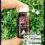 เซรั่มเปลือกสน ไพน์ บาร์ค เซรั่ม Pine Bark Serum AS16 thumbnail 18