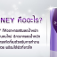 ไฟทีนี เบสท์ เอ็กซ์ตร้า (Phyteney Best Extra) ผลิตภัณฑ์ลดน้ำหนักระชับสัดส่วน ส่งฟรี EMS thumbnail 12