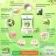 กรีนติน่า ไลม์เชค ชามะนาวลดน้ำหนัก (Greentina Lime Shake) thumbnail 3