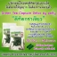 ดีท็อกชาเขียว by patty (Green Tea Capsule Detox) ล้างไขมันระเบิดพุงยุบ thumbnail 10