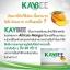kaybee perfect (อาหารเสริมลดน้ำหนัก ขนาดเล็ก 10 เม็ด) thumbnail 3