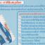 ยาสีฟันสมุนไพรสไมล์ออน (SmileOn Toothpaste) thumbnail 3
