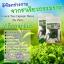 ดีท็อกชาเขียว by patty (Green Tea Capsule Detox) ล้างไขมันระเบิดพุงยุบ thumbnail 11