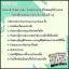 แผ่นแปะเท้าดูดสารพิษเพื่อสุขภาพ Kinoki Cleansing Detox Foot Pads thumbnail 4
