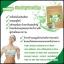 ชามะรุม สมุนไพรลดน้ำหนัก By Healthy tea thumbnail 3