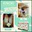 แผ่นแปะเท้าดูดสารพิษเพื่อสุขภาพ Kinoki Cleansing Detox Foot Pads thumbnail 7