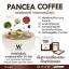 แพนเซีย คอฟฟี่ กาแฟลดน้ำหนัก (PANCEA COFFEE) thumbnail 3