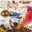 ขาย กาแฟโอโม่ สลิม (OMO Coffee Slim) ของแท้ thumbnail 14