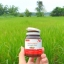 ขาย แอลกลูต้าอาโมนิ L-Gluta Armoni Red Fruit โปรโมชั่น ส่งฟรี EMS thumbnail 7