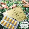 โกลด์สลิม Gold Slim by Boboja