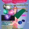 โปรโมชั่น Yoga Firm @ Home เสื่อโยคะ & บอลโยคะ พิเศษแถม Balance Disc
