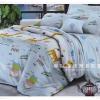 ผ้าปูที่นอน ลายกราฟฟิค ขนาด 6 ฟุต(5 ชิ้น)[GA-04]