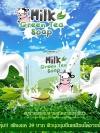 สบู่น้ำนมชาเขียว (Milk Green Tea Soap)