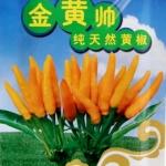 พริกเหลืองซองดั้งเดิม - Chinese Yellow Pepper 300 เมล็ด