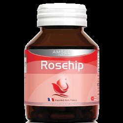 แอมเซล โรสฮิป Amsel Rosehip