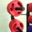 ขาย Body Pump Rack MAXXFiT สามารถเก็บ SET Body Pump MAXXFiT 20 KG. ได้ 12 ชุด thumbnail 20