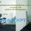 ขาย อุปกรณ์เสริมบริหารหลัง สำหรับเสริมกับเก้าอี้ยกน้ำหนัก MAXXFiT AB 111 thumbnail 44