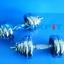 ขาย ชุดดัมเบลเหล็กชุบโครเมียม 30 KG. MAXXFiT thumbnail 4