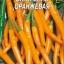 พริกไซฮาเรลล่าสีส้ม - Syharella Orange Pepper ซองดั้งเดิม thumbnail 1