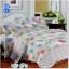 ผ้าปูที่นอนราคาถูก ขนาด 6 ฟุต(5 ชิ้น)[GB-33] thumbnail 1