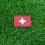 อาร์มปักธงสวิสเซอร์แลนด์